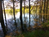 Hochwasser am Stausee