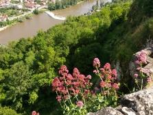 Blick auf den Fluss Lot