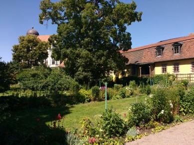 Im Garten bei Goethes