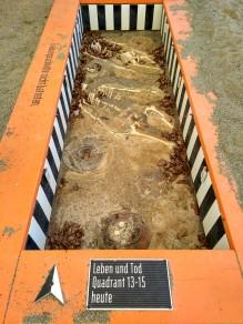 Gruselige Ausgrabungen...