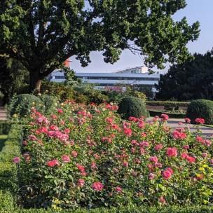 Rosengarten/Gesundbrunnen
