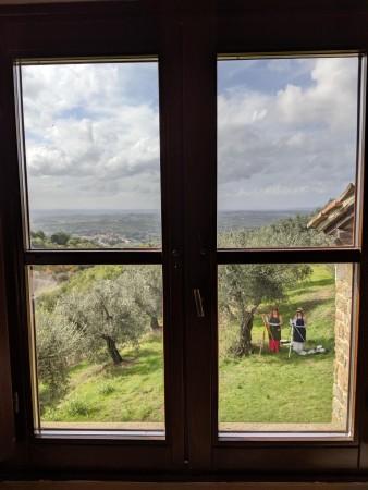 Blick aus dem Fenster des Geburtshauses