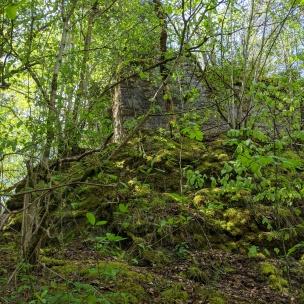 Die Ruine Eutingertal
