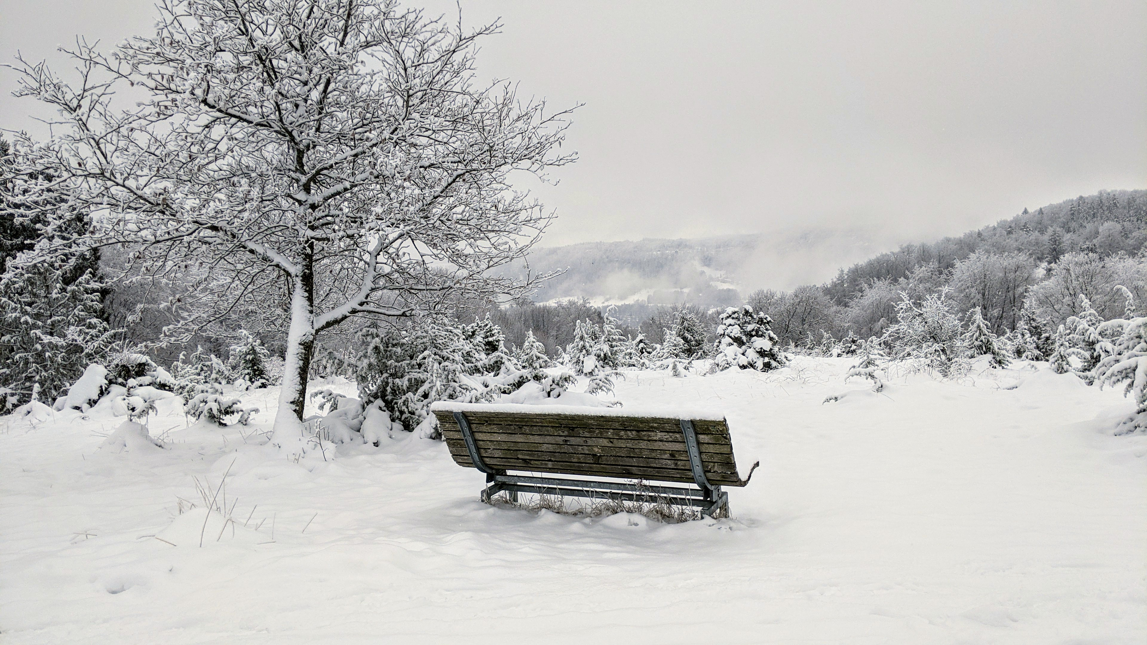 Alpenblick 950m